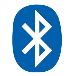 Bluetooth Modul für Dampfdusche