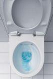 Wand WC Spülrandlos